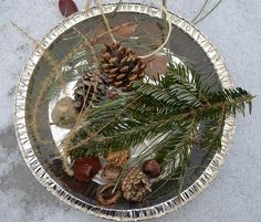 Winter Nature Hike Suncatcher  kids collect treasures on hike, arrange it in a pie tin, add water, freeze and hang as an ice sun catcher!
