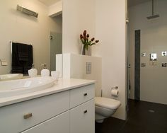 Bathroom Curbless Shower Design, Pictures, Remodel, Decor and Ideas - page 11