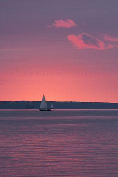 sailing into a pink sunset