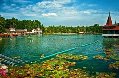 The famous thermal lake Hévíz in Hungary