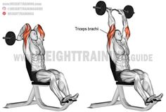 Isolate your triceps brachii with the overhead EZ bar triceps extension. Using the EZ bar instead of a standard barbell can be easier on your wrists. Gym Workout Tips, Weight Training Workouts, Triceps Workout, Workout Bauch, Chest Workouts, Shoulder Workout, Muscle Fitness, Muscle Food, Fitness Life