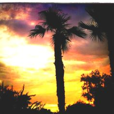 Aaahhh. Arizona sunset. The first one I can remember seeing I was 10 or 11 years old and I was really moved.