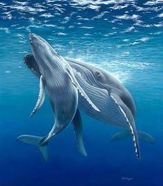KANYINI (Aboriginal word for nurture) (2015) Subject: Humpback Whale Mum & Calf Dimensions: 138 x 120cm Medium: Pastel