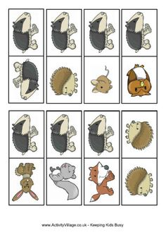 Wildlife dominoes