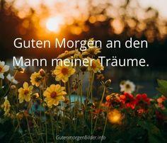 { Beste } 200+ Guten Morgen Bilder für Facebook, Jappy, WhatsApp Plants, Good Morning Images, Plant, Planets