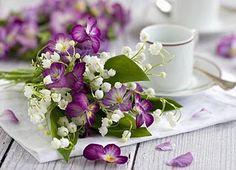 Lírios do vale e Amor perfeito - Flores Jardim
