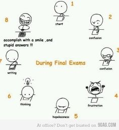 Final exams cycle