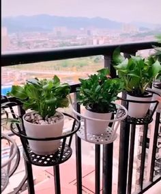 🌼Flexible and compact punch-free hook design, tough and strong force, fine craftsmanship House Plants Decor, Plant Decor, Flower Planters, Flower Pots, Flower Ideas, Outdoor Plants, Outdoor Gardens, Garden Art, Garden Design