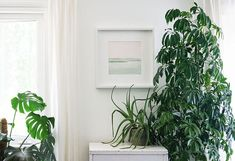 "12x12"" - Galiano Island - Other Originals - Shop — WANRU KEMP Arches Watercolor Paper, Watercolor Landscape Paintings, 2b Pencil, Night Sea, Landscape Walls, Wall Prints, Beautiful Landscapes, Plant Leaves, Island"