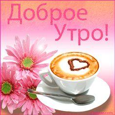 Доброе утро.