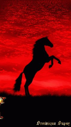 Decent Image Scraps: Happy New Year Pretty Horses, Beautiful Horses, Animals Beautiful, Happy New Year Animation, Gif Animated Images, Happy New Year Fireworks, Happy Evening, Happy New Year Cards, Horse Silhouette