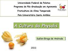 Universidade Federal de Pelotas Programa de Pós-Graduação em…