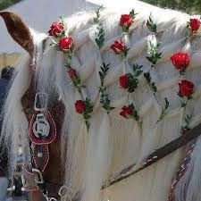 Diamond braided horse mane with small roses