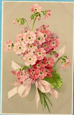 X5851 Meissner and Buch postcard 1387, Pink flowers with ribbon