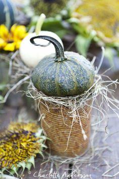old pot, dry grass, sm pumpkin - Garden Flow: Pumpkin times