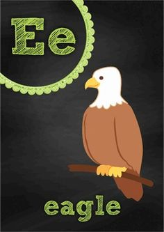 Chalk Posters - Long Vowels {FREE}