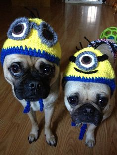 Dog or Cat Minion Custom Hat by Pugpossessed on Etsy, $14.00