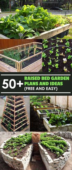 These raised bed garden plans are free, do-it-yourself, and don't cost much in materials to make! Organized by small - medium - large, and unconventional.