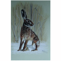 Country Living / Nic Vickery Animal Artist / Limited edition giclee print 'Winter Hare'