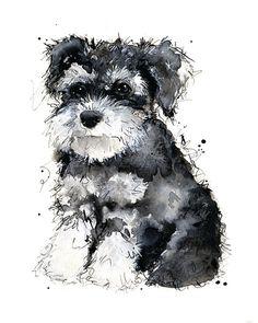 Miniature Schnauzer Puppy Print of by NatalieIllustrations