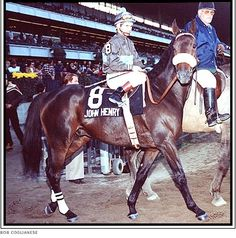 John Henry, champion race horse on dirt and turf. He retired to Kentucky Horse Park and lived to 32 years old.