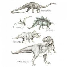 L'affiche dinosaures de Love maé fascinera votre petit aventurier.