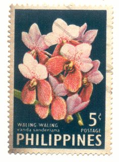 Filipino tattoos – Tattoos And Orchid Images, Postage Stamp Collection, Philippines Culture, Filipino Tattoos, Vintage Botanical Prints, Postcard Design, Vintage Stamps, Small Art, Flower Wallpaper