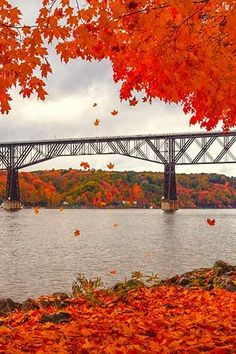 The Prettiest Places to Gawk at Fall Foliage Near NYC via @PureWow