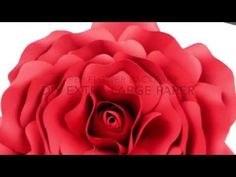 Extra Large Rose Template | DIY Paper Flower Backdrop for Wedding/Events - YouTube