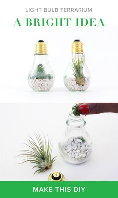 CLICK TO SHOP THE SUPPLIES TO MAKE THIS DIY