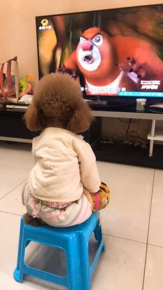 What a smart dog it is! dog today to find more amazing videos. Funny Animal Videos, Cute Funny Animals, Funny Animal Pictures, Cute Baby Animals, Animal Memes, Funny Cute, Funny Dogs, Animals And Pets, Cute Cats