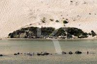 Portugal torrão natal: FREGUESIA DE SALIR DO PORTO