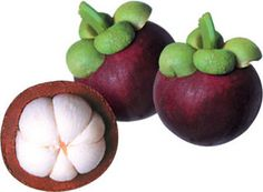 """Freshly picked mangosteen, """"the queen of tropical fruit."""