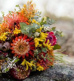 Orange pincushion, gold kangaroo paw, pink protea, Australian flowers and foliages. Lots of texture and bright colour in this bouquet! Flor Protea, Protea Bouquet, Protea Flower, Fall Flowers, Bridal Flowers, Flower Bouquet Wedding, Floral Wedding, Bridal Bouquets, Wedding Bouquets