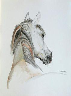 Ansata El Naseri Canvas Print / Canvas Art by Janina Suuronen