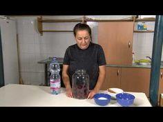 Természetünk kincsei: Hogyan készül a cékla kvash? - YouTube Cotton Candy, Youtube, Youtubers, Floss Sugar, Youtube Movies