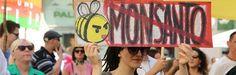 Monsanto Tribunaal kan meest gehate bedrijf ter wereld emotionele tik uitdelen - http://www.ninefornews.nl/monsanto-tribunaal-kan-meest-gehate-bedrijf-ter-wereld-emotionele-tik-uitdelen/