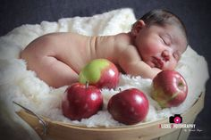 Newborn, brother, sister, black and white, love, apples, basket