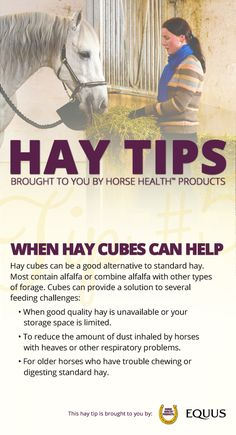 Ever consider feeding your horse hay cubes? The advantages include less storage space, handling ease, and decreased feeding waste.  You'll also find a complete nutritional analysis on every bag or compressed bale--you usually need to send a sample of hay to a lab for analysis.  But there's more! Enter to win $10,000 worth of hay here >>http://bit.ly/EQ-Winter-Hay-Sweepstakes