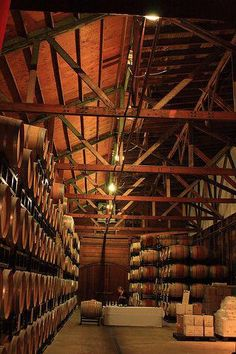 If you're looking for good-quality grape, Italian wine bottles are definitely the best to take into consideration Caves, Wine Lovers, Napa Style, Moonshine Still, Wine News, Wine Vineyards, Wine Wednesday, In Vino Veritas, Italian Wine