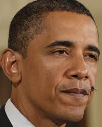A fly on the wall that is obama's face. Love it.