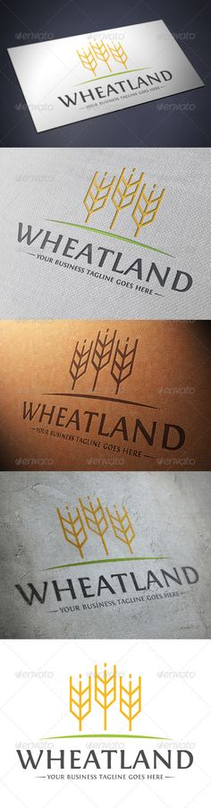 Wheat Logo Template - Three color version: color, greyscale and single color. - The logo is 100% resizable. - You can change text and colors very easy using the named and organized layers that includes the file. - The typography used is Fontin you can download here: http://www.fontsquirrel.com/fonts/Fontin http://startupstacks.com/logos/wheat-logo-template.html - free download