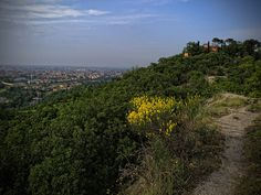 Hills above Bologna by sdhaddow, via Flickr