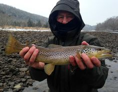 Rich with a nice winter brown _ Ben Levin pic