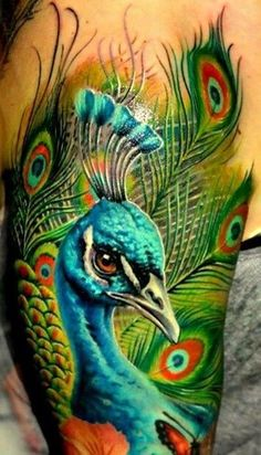 amazing #peacock #tattoo #peacocktattoo
