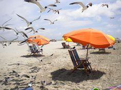 Beautiful Stewart Beach in Galveston Texas
