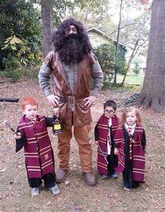Ron Weasley, Hagrid, Harry Potter y Hermione