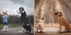 Photographer Shows How Gentle Big Dogs are Towards Their Little Humans