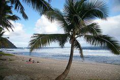 La spiaggia di Grande Anse all'isola della Reunion. Uno spettacolo di pace e natura!
