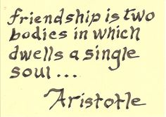 Aristotle on Friendship     (photo by gbergeron2)